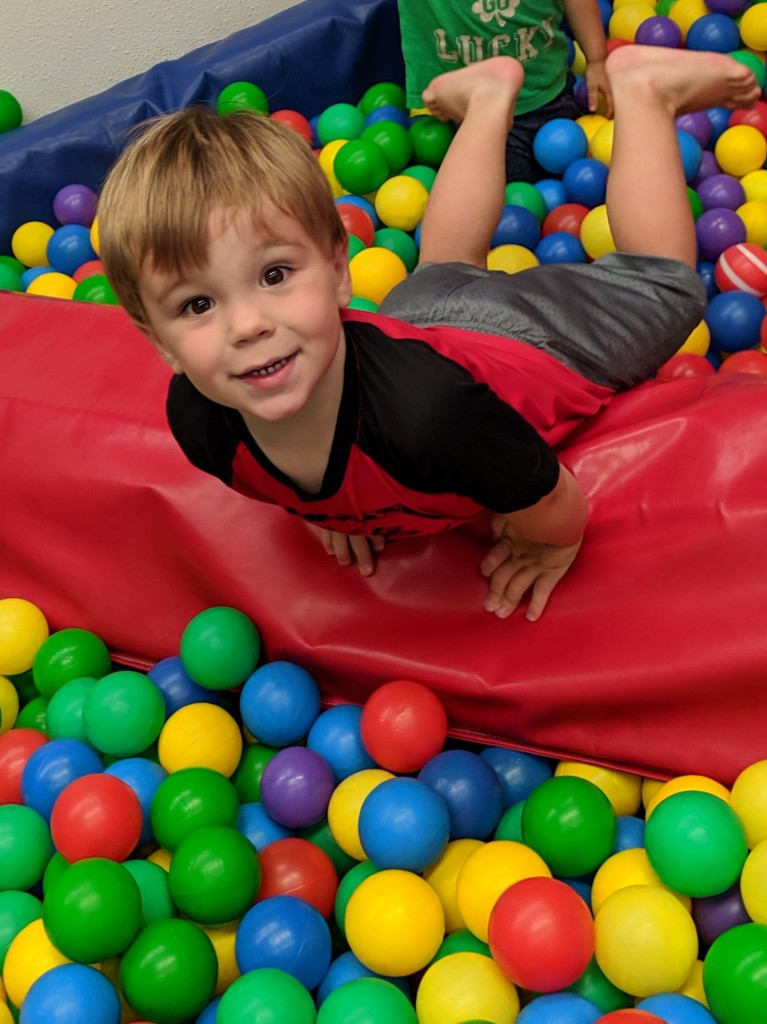 Jungle Gym Ball Pit 2 years