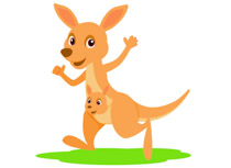 Kangaroo With Joey In Pouch Clipart